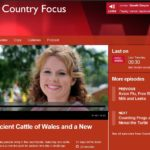 Ancient Cattle of Wales on Radio Wales
