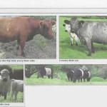 three_counties_farmer_0002