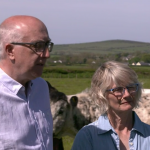 "Ancient Cattle of Wales on ""Ffermio"", S4C"